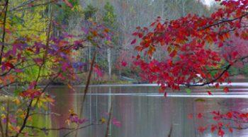 Fall on Lake Lanier