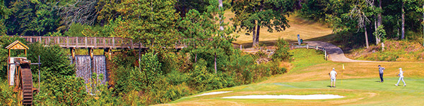 The Creek Golf Course at Hard Labor Creek