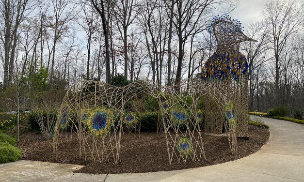 New sculptures roosting at Gainesville Garden
