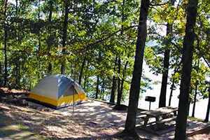 Tent under pine trees by the lake
